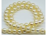 8.5-9 mm Golden Akoya Pearl Necklace AA+/AAA